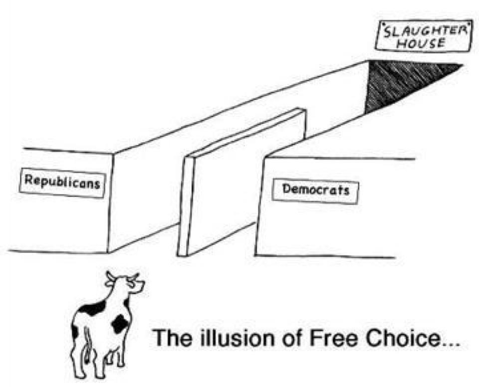 Илюзията на свободния избор