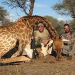 2 антилопи и 1 жираф по-малко