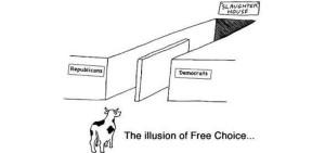 Илюзията на свободния избор Петко Иванов